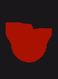 Logo UndiesMotion 2015 BB-LF couleur